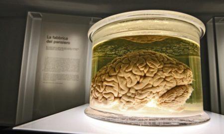 L'Ideatorio dell'USI - La fabbrica del pensiero
