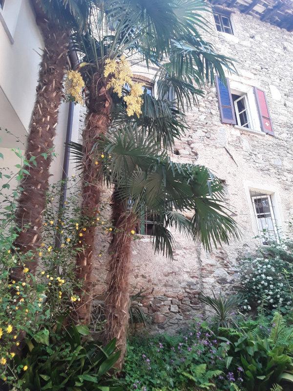 Breganzona - Scorcio del vecchio nucleo