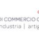 Camera di commercio del Canton Ticino - Logo