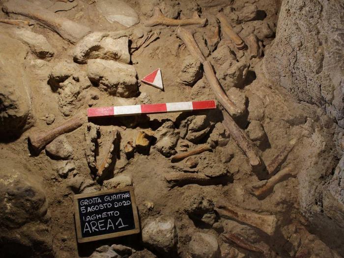 l piano di calpestio della grotta con i resti fossili di animali e di ominidi